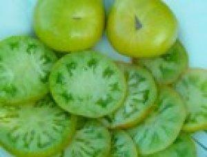 pomodoro evergreen